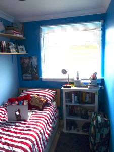 tidy bedroom, still not enough room to sling a cat...don't even have a cat to sling