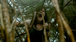 Evil-Dead-2013-Trees-e1365064738689