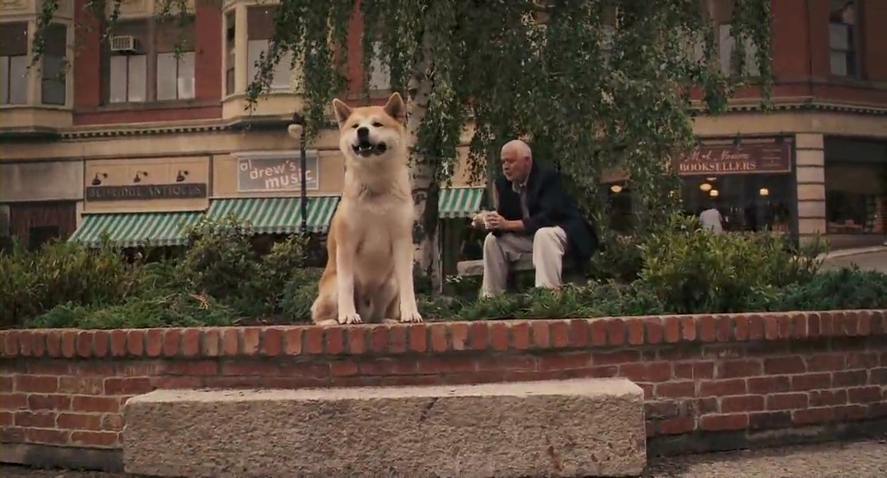Hachi: A Dog's Tale – Films and Things